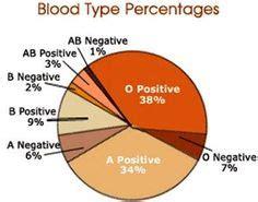 Blood Type And Inheritance - Printable Worksheets